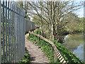 SP3065 : Shadows across Riverside Walk  by Robin Stott