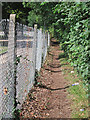 TQ7810 : Footpath by Dogkennel Wood by Oast House Archive