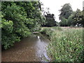 TQ4872 : River Cray by David Anstiss