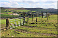 SD9703 : The Tame Valley from near Little Haigh Farm by Michael Fox