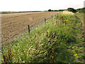 TG0242 : A field-footpath boundary - path to Wiveton Downs by Evelyn Simak