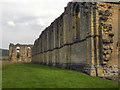 SE5478 : Byland Abbey by David Dixon