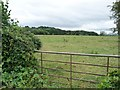 SO5468 : Half-blocked gate into pasture field by Christine Johnstone