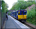 NS2374 : Refurbished train at IBM Halt by Thomas Nugent