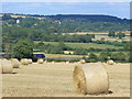 SP3320 : Evenlode Valley, West of Charlbury by Colin Smith