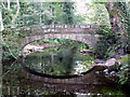 SK2987 : Footbridge reflected in the River Rivelin by Graham Hogg