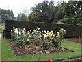 TQ8010 : Flowers in Alexandra Park by Paul Gillett