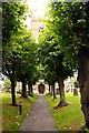 SU2092 : Tree lined path to St Michael and All Angels Church by Steve Daniels