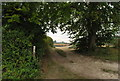 TL1330 : Footpath from Pirton to Pegsdon Hills by Martin