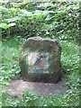 SE7971 : Kingfisher mosaic by Pauline Eccles