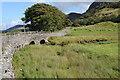 SH8139 : Pont Rhyd-y-fen by Philip Halling