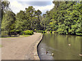 SJ8886 : Bramall Hall Park Lake by David Dixon