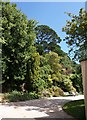 SX8754 : Gardens at rear of the house, Greenway by Derek Harper