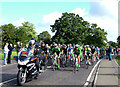 TL8261 : Cycle Tour of Britain 2010 passes through by John Goldsmith