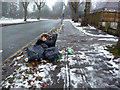 SP0683 : Bin bags awaiting collection on an icy Pebble Mill Road by Phil Champion