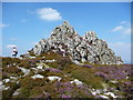 SO3699 : On the Stiperstones at the Devil's Chair by Jeremy Bolwell