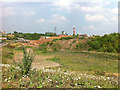 SP0482 : Waste land next to Aston Webb Boulevard (Selly Oak New Road, Phase 1) by Phil Champion