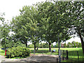 TQ2573 : Memorial trees in King George's Park by Stephen Craven