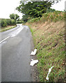 SP2380 : Takeaway litter, Cornets End Lane  by Robin Stott