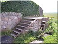 SJ2679 : Well worn steps near Gayton Cottage by Raymond Knapman