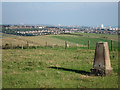 TQ2508 : Trig point at Mount Zion by Oast House Archive
