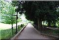 TQ1873 : The Thames Path by N Chadwick