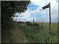 SD9710 : Bridleway to Ripponden Road, Denshaw by michael ely