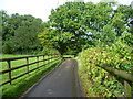 TQ6664 : Lane by Coomb Hill Farm by Ian Yarham