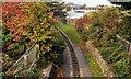 J5081 : Miniature railway, Bangor (3) by Albert Bridge