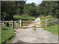 NZ8301 : Rail Trail from Goathland to Grosmont by Pauline E