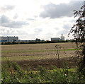TF6018 : Harvested field east of Pullover Road (A47), King's Lynn by Evelyn Simak