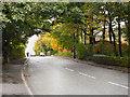 SD7515 : Bolton Road (A676), Hawkshaw by David Dixon