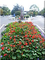 TQ3373 : Flowerbed and memorial fountain in Dulwich Village by Ian Yarham