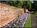 TQ4275 : Wall and border, Well Hall Pleasaunce by Derek Harper
