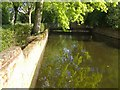 TQ4275 : Moat, Well Hall Pleasaunce by Derek Harper