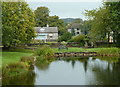 SK1566 : Village pond, Monyash by Andrew Hill