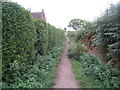 SJ5271 : Footpath at Manley Common by Jonathan Thacker