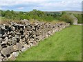 SX6259 : Wall, King's Barn by Derek Harper