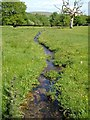 SX6259 : Stream near King's Barn by Derek Harper