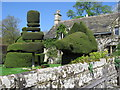 SK2366 : Topiary Display by Tony Bacon