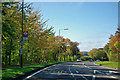 TQ4662 : Charmwood Lane bus stop by Robin Webster