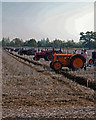 TL1644 : Shuttleworth Farm Ploughing Competition by Martin