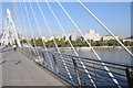 TQ3080 : Golden Jubilee Bridges by Philip Halling