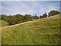 SP9614 : Barley End Farm towards Clipper Down by Martin