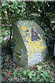 SU5097 : Benchmark on boundary stone beside towpath at Abingdon Lock by Roger Templeman
