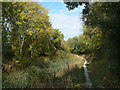 SK6834 : Grantham Canal at Colston Bridge by Alan Murray-Rust