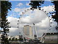 TQ3079 : The London Eye by Mick Lobb