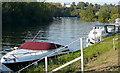 SU8183 : River Thames near Danesfield by Graham Horn