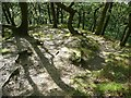 SE0026 : Path erosion on Hebden Royd FP 17, Redacre Wood , Mytholmroyd by Humphrey Bolton