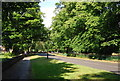 SP0682 : Moor Green Lane by N Chadwick